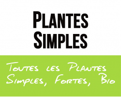 Plantes simples