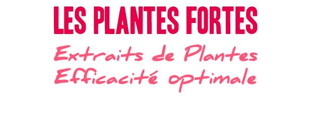 PLANTES FORTES Efficacité optimales Extraits de Plantes