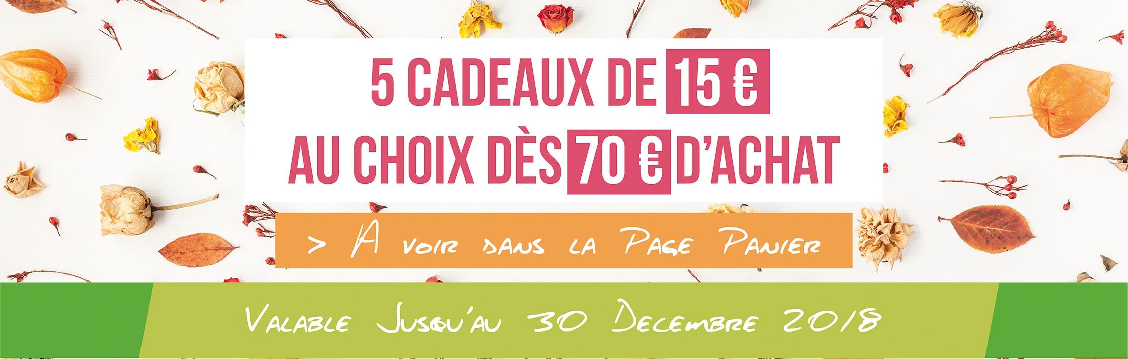CADEAU DE 15 € DES 70 € D'ACHAT
